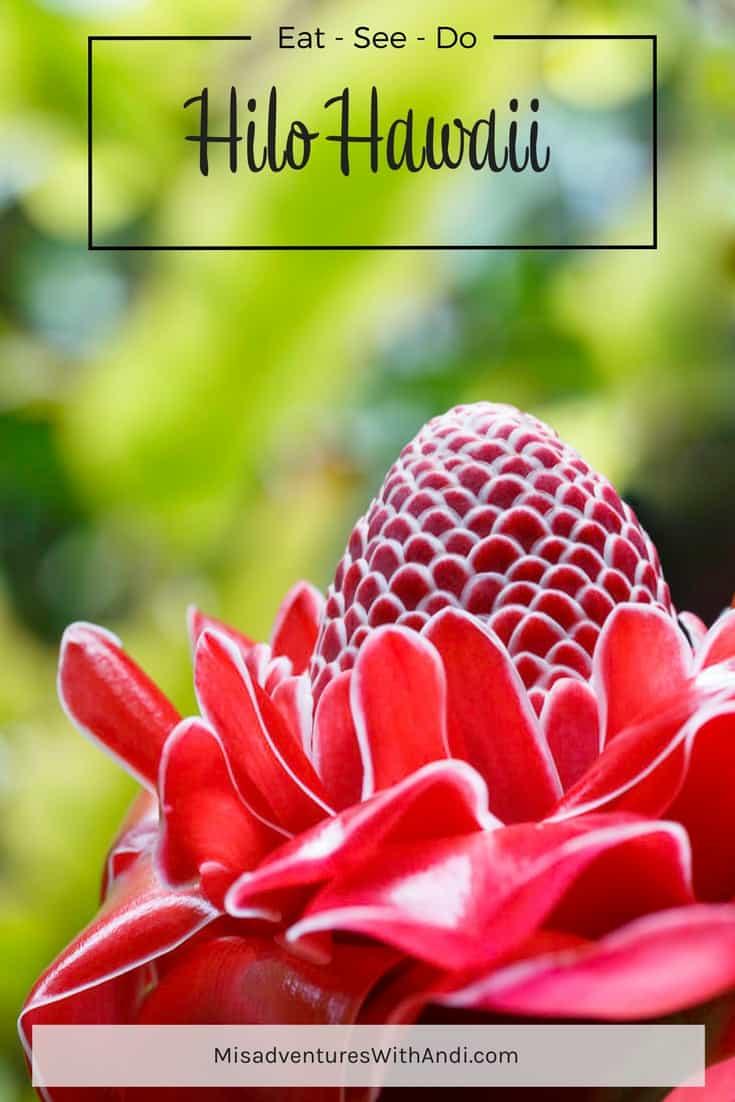 Hilo Hawaii USA