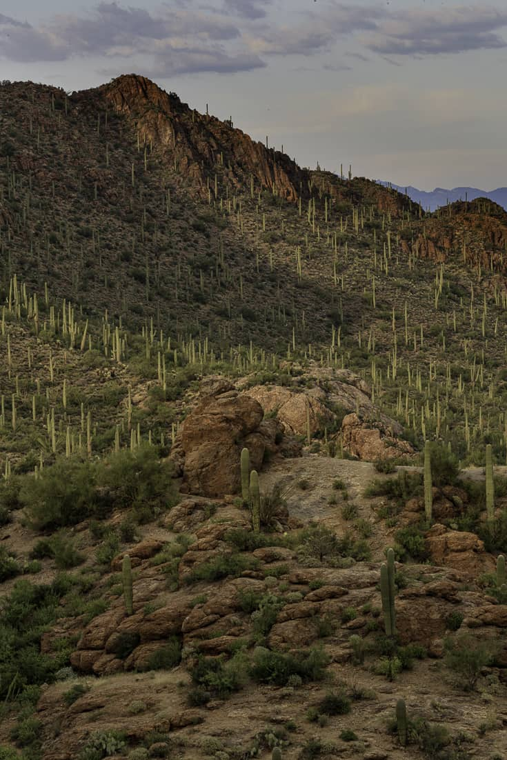 Things to do in Tucson - Sunset at Gates Pass