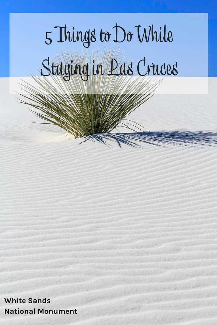 Things to Do While Staying in Las Cruces