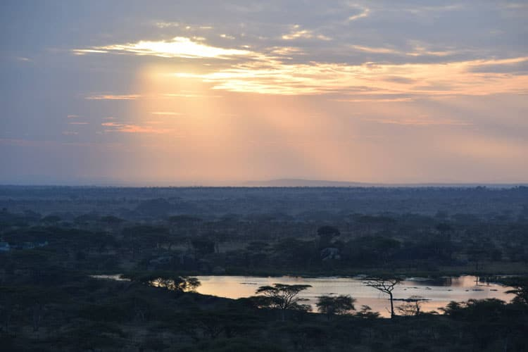 Flight over Serengeti National Park in Tanzania