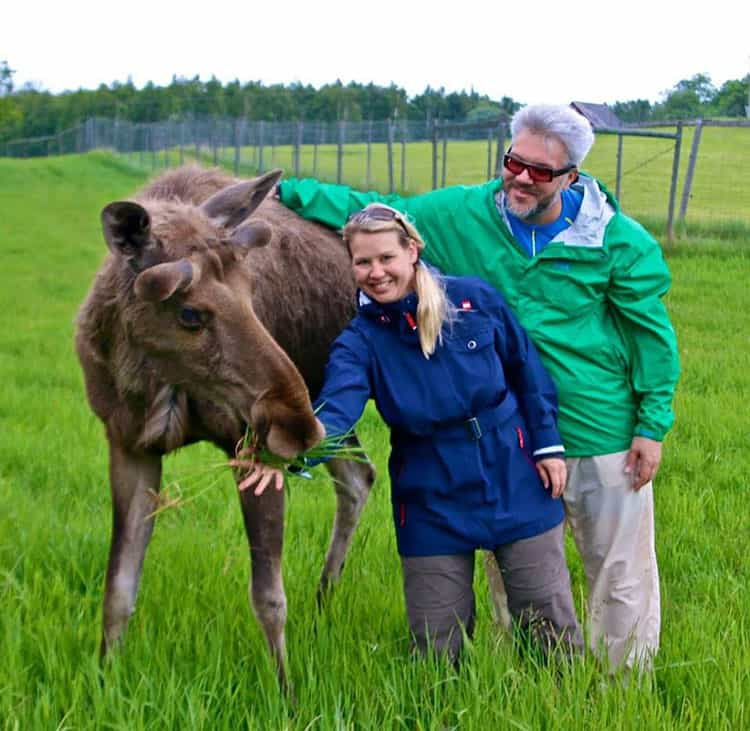 Traveler Tuesday – Bret and Mary of Green Global Travel_Moose
