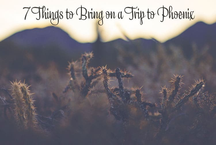 7 Things to Bring on a Trip to Phoenix