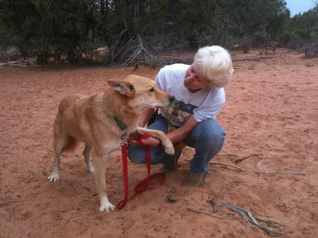 Best Friends Animal Sanctuary Kanab