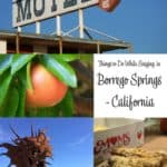 5 Things to Do While Staying in Borrego Springs 2