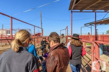 Andi Interviewing Arizona Farmer