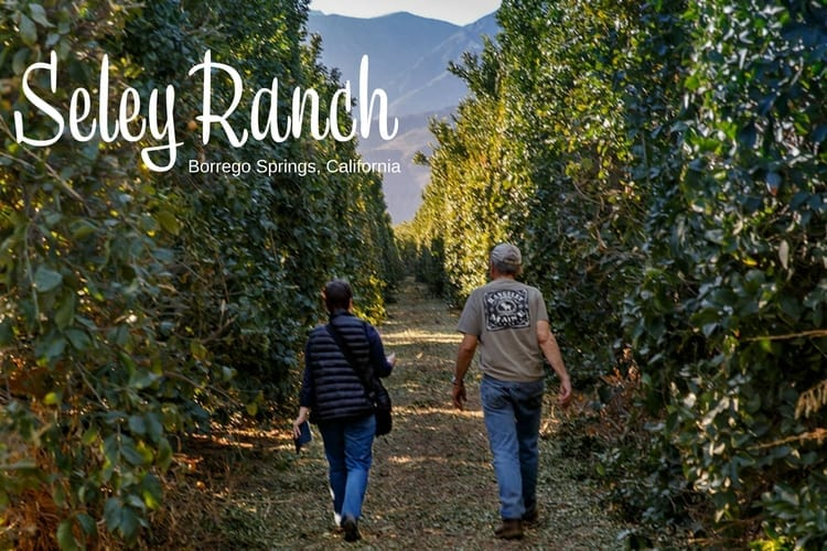 Locals I Love: Seley Ranch