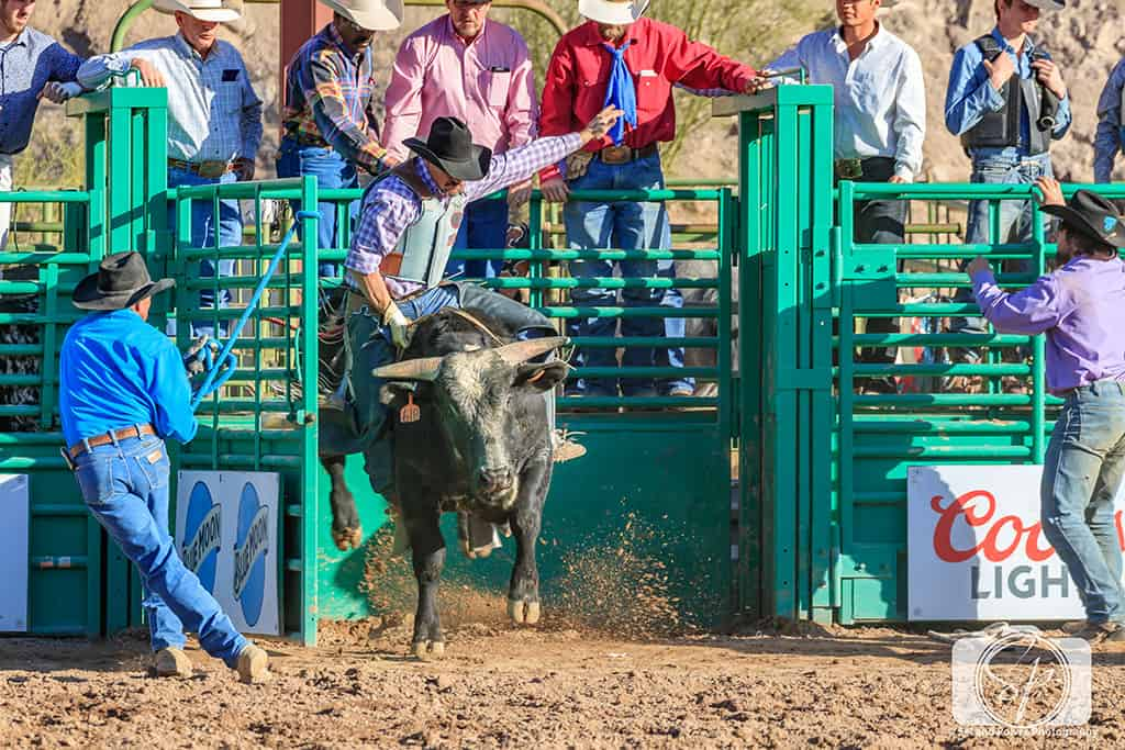 Arizona Rodeo - Wickenburg Bull Rider