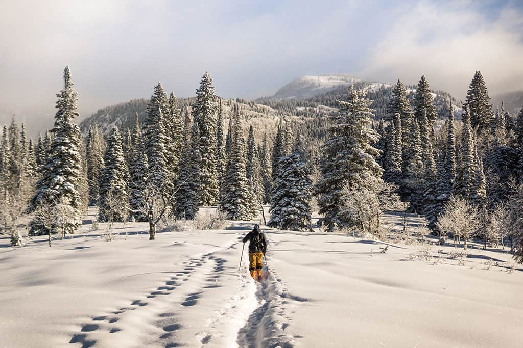 Crushing on Colorado_SnowShoeing_Photo by Steven Ramon on Unsplash