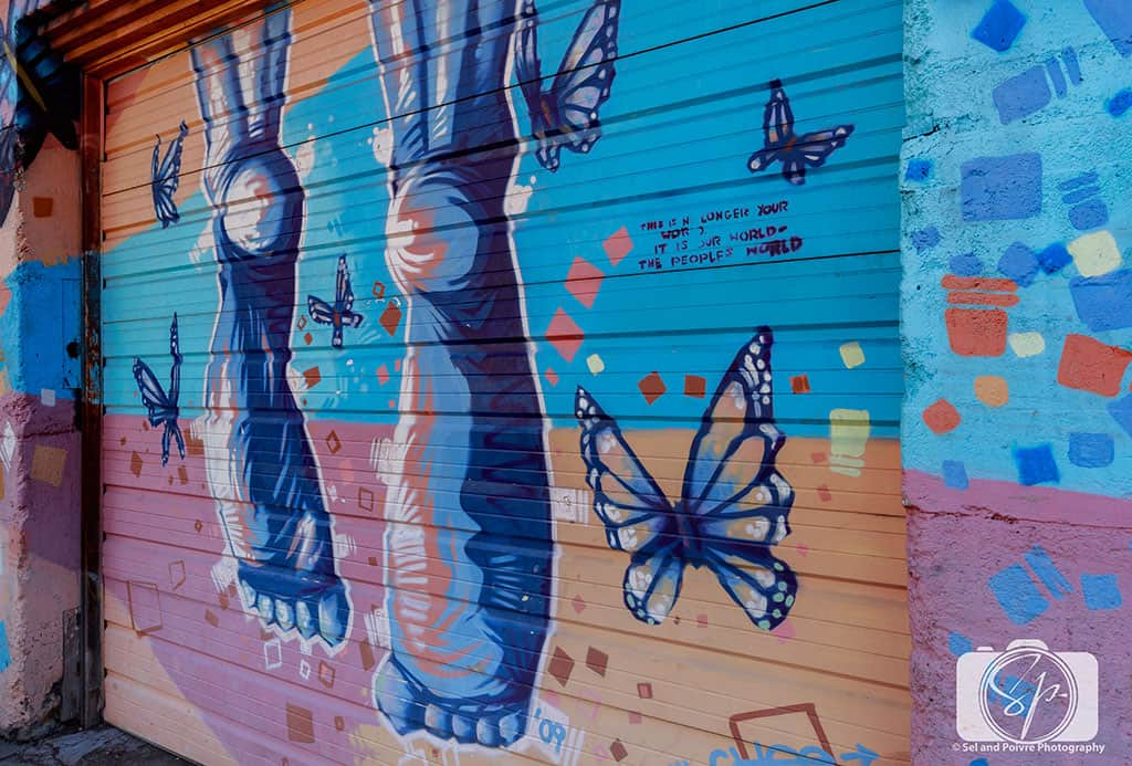Flagstaff Mural Butterfly