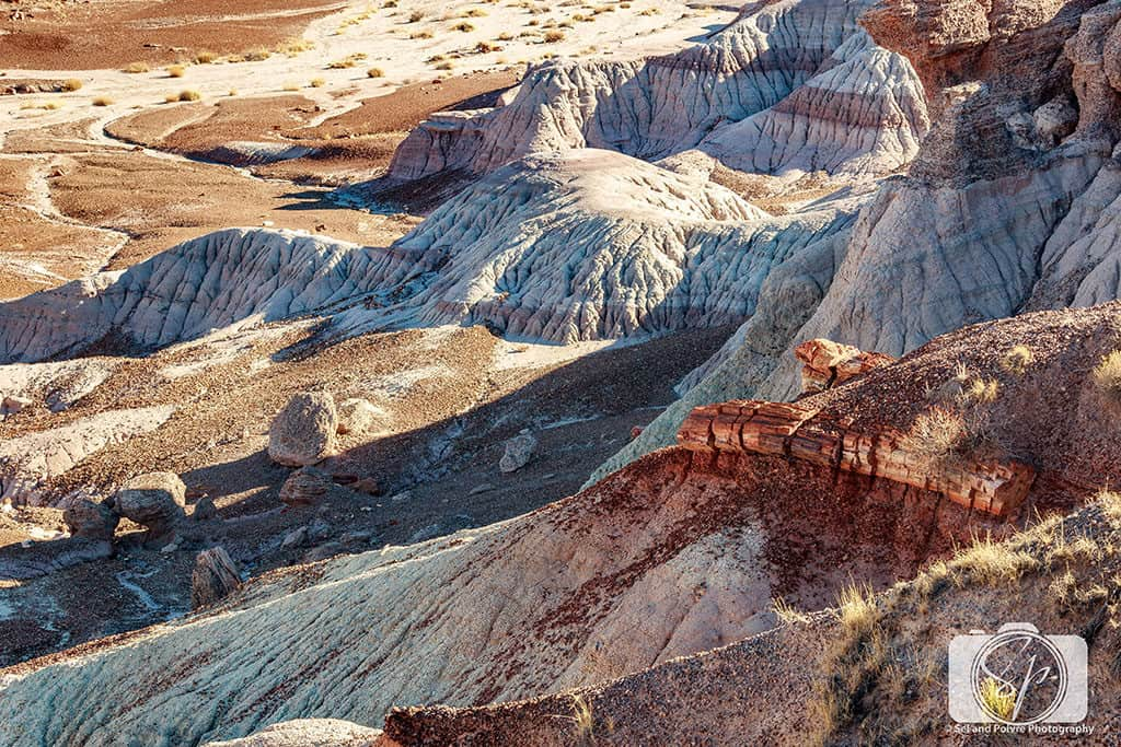 Along the Blue Mesa Trail - Petrified Forest National Park