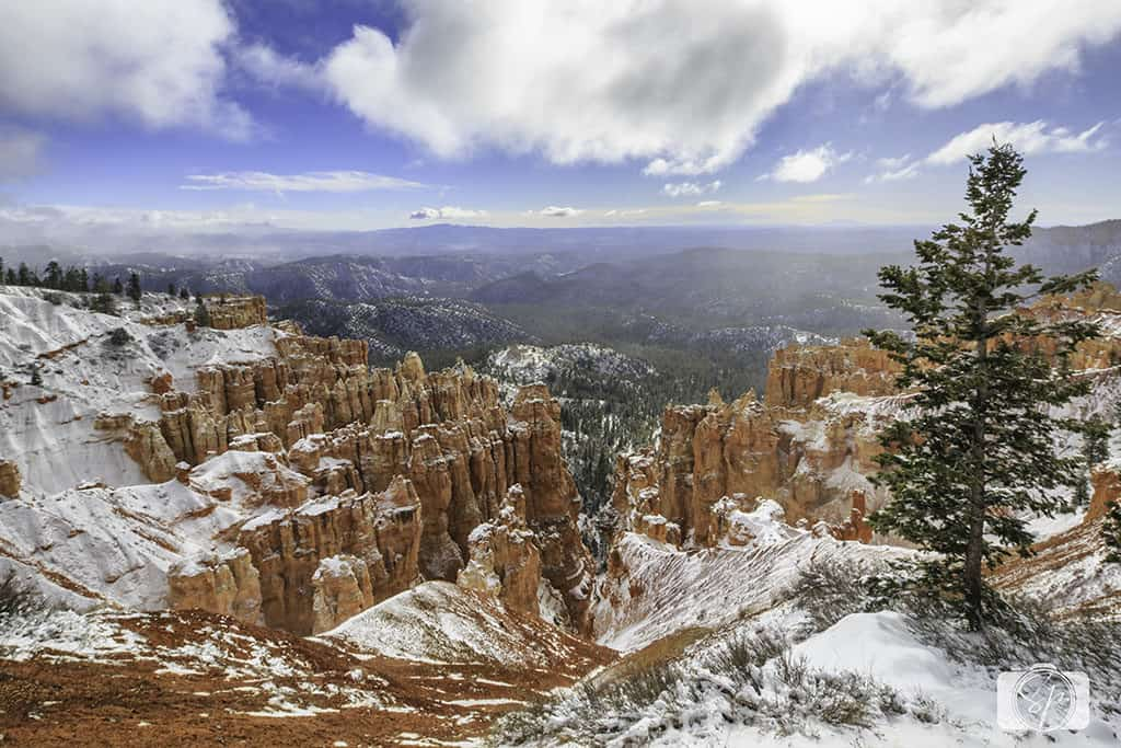 BRYCE CANYON-Rainbow Point