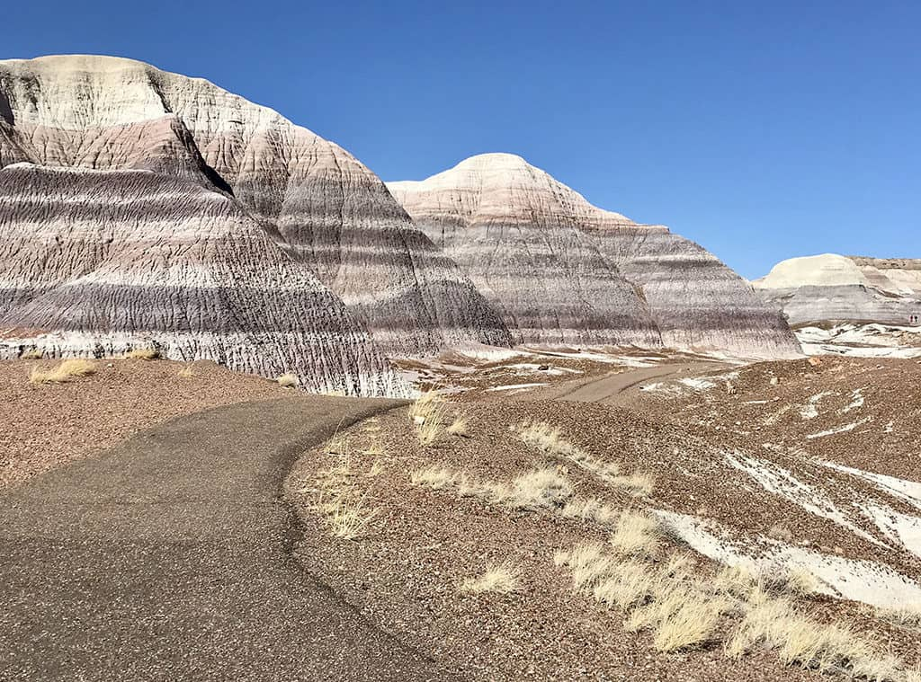Blue Mesa Trail - Petrified Forest National Park