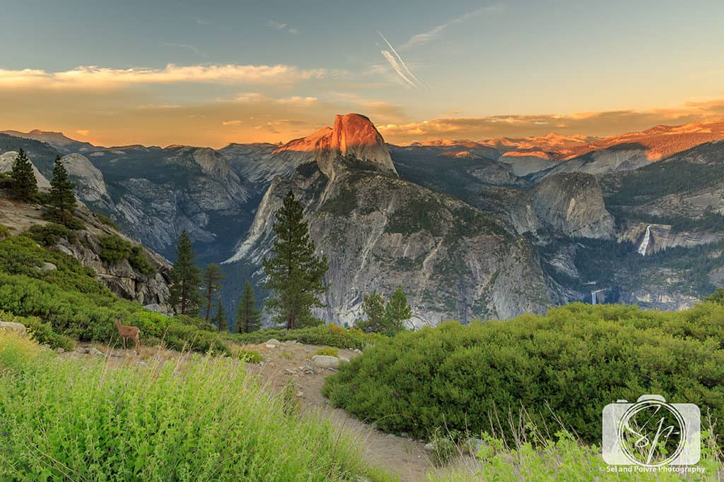Yosemite-National Park