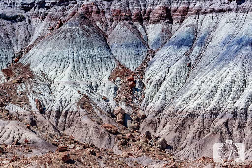 Zoomed in on Jasper Forest -Petrified Forest National Park