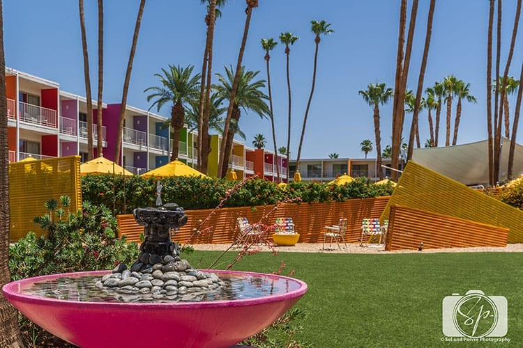 Palm Springs-Saguaro Hotel: Things to do in Palm Springs