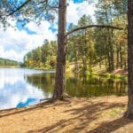 Alto Lake in Ruidoso hero