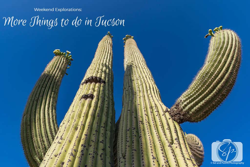 Weekend Explorations - More Things to do in Tucson