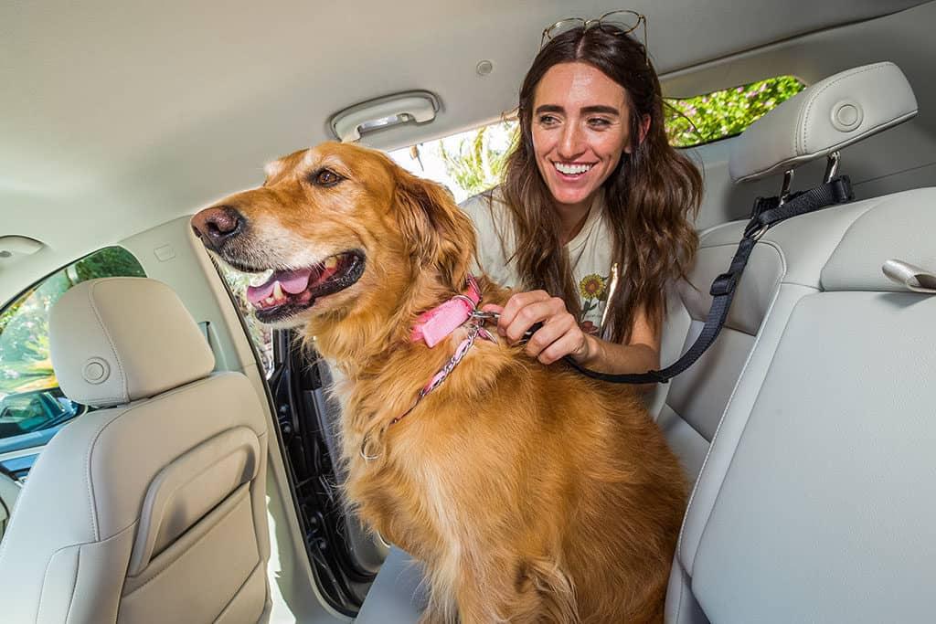 Samantha-and-Daisy_GMC-Denali-and-Dogs