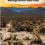 7 Things to Do in Anza-Borrego Desert State Park - Little Blair Valley