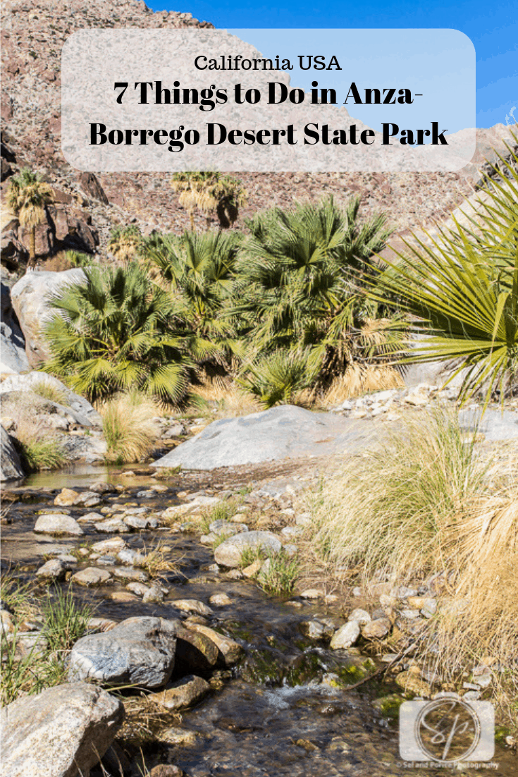 7 Things to Do in Anza-Borrego Desert State Park