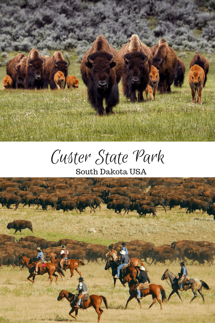 Custer State Park