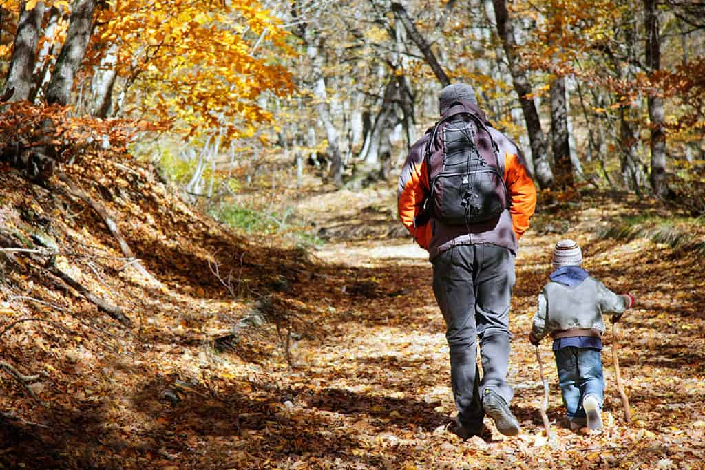 7 Most Beautiful and Family Friendly Hiking Trails in the US