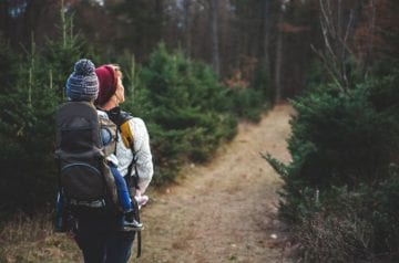 7 Most Beautiful and Family Friendly Hiking Trails in the US hero