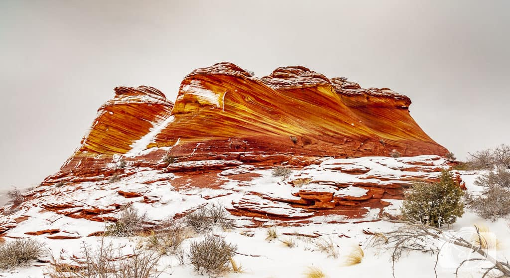 The Wave in the Winter - Arizona USA