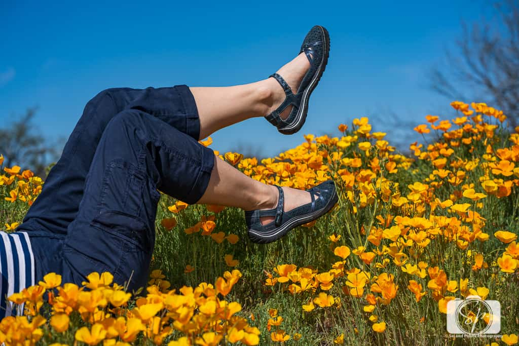 Andi amongst the Poppies at Santa Catalina State Park in Arizona in her Jambu Cherry Blossom Shoes in Navy-02