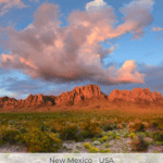 5 Things to do While Staying in Las Cruces