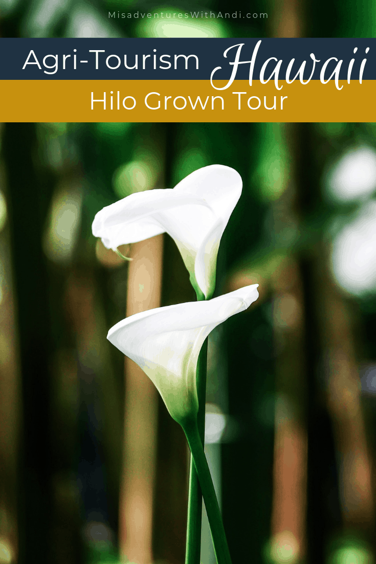 Hawaii – Hilo Grown Tour USA