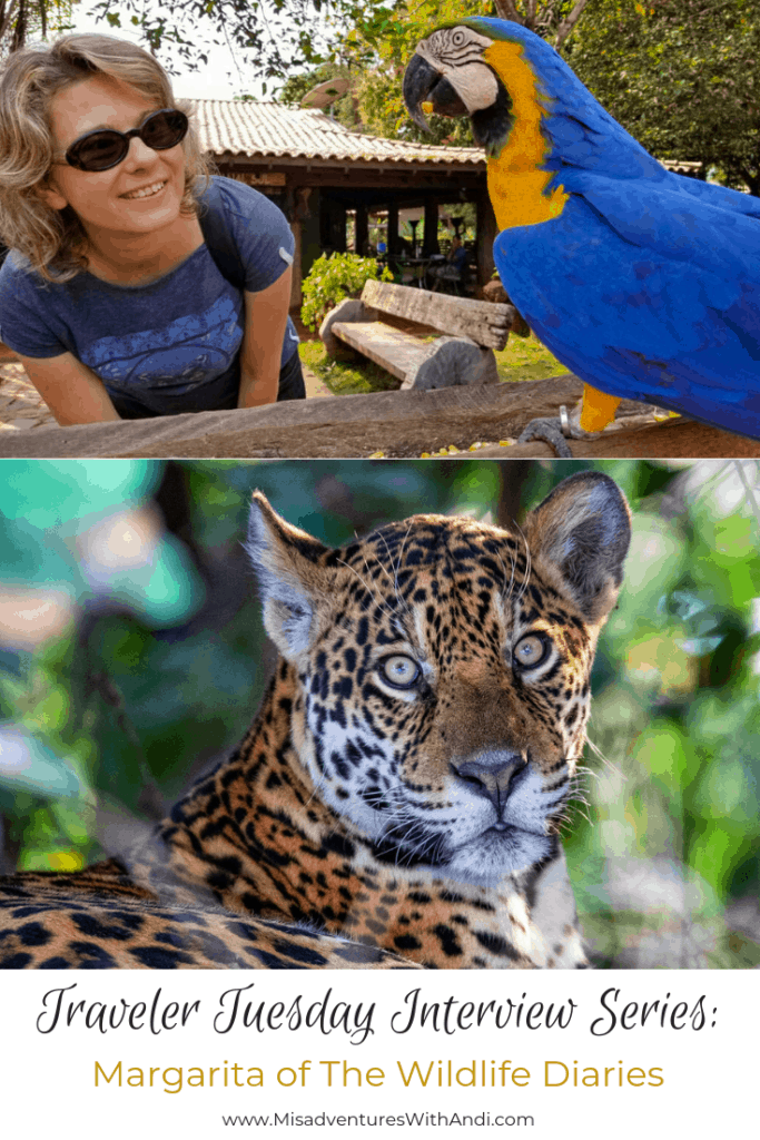 Traveler Tuesday Travel Blogger Interview with Margarita of The Wildlife Diaries