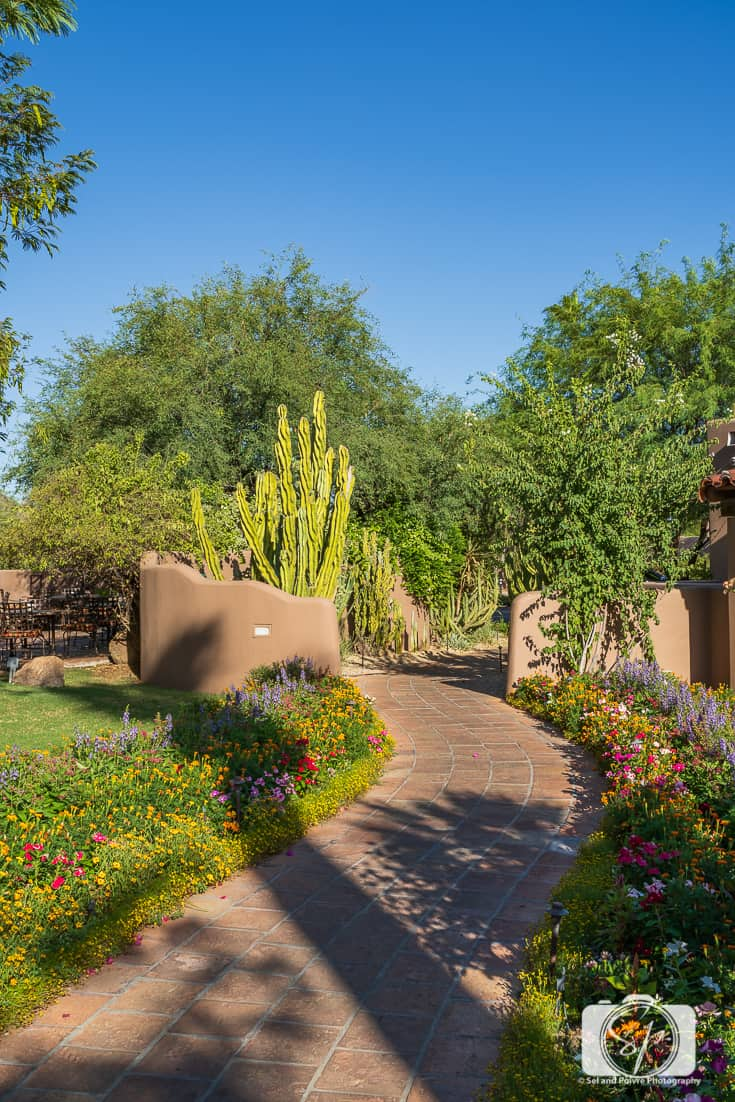 On the grounds of La Hermosa Inn Phoenix Scottsdale Arizona