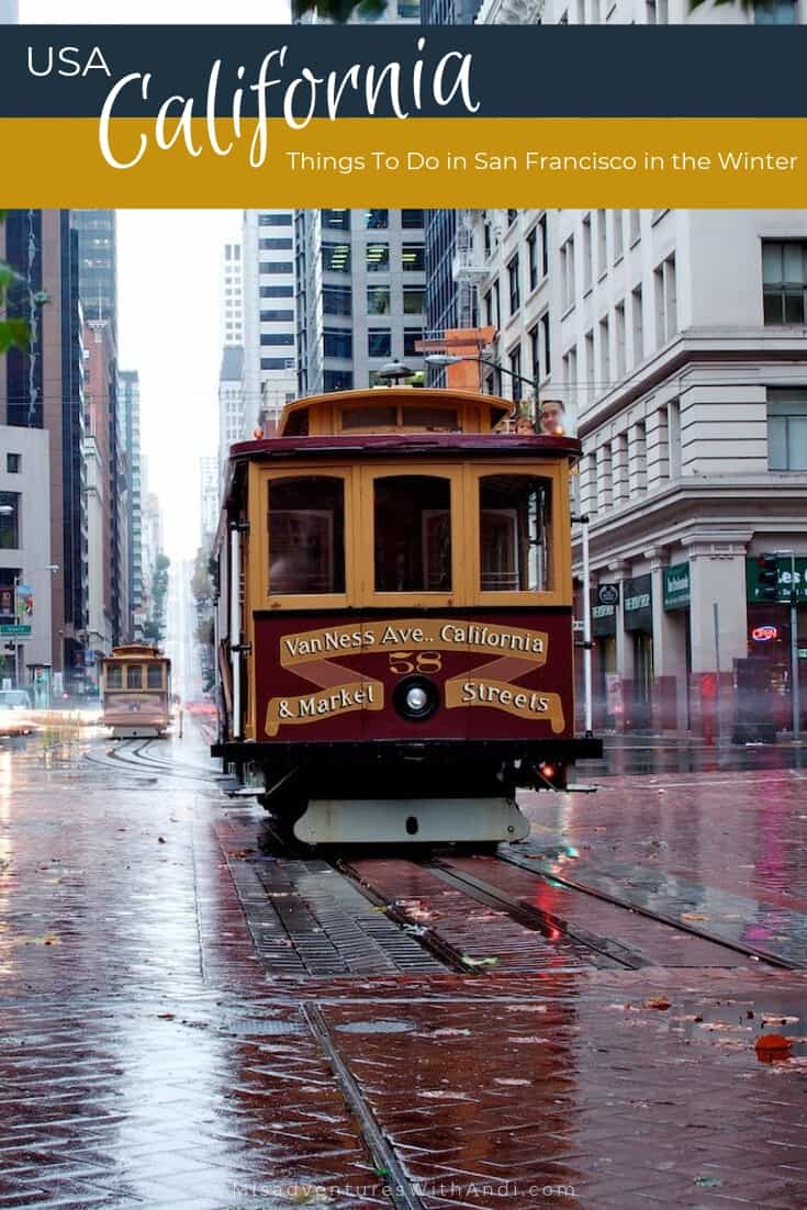 Things To Do in San Francisco in the Winter California USA