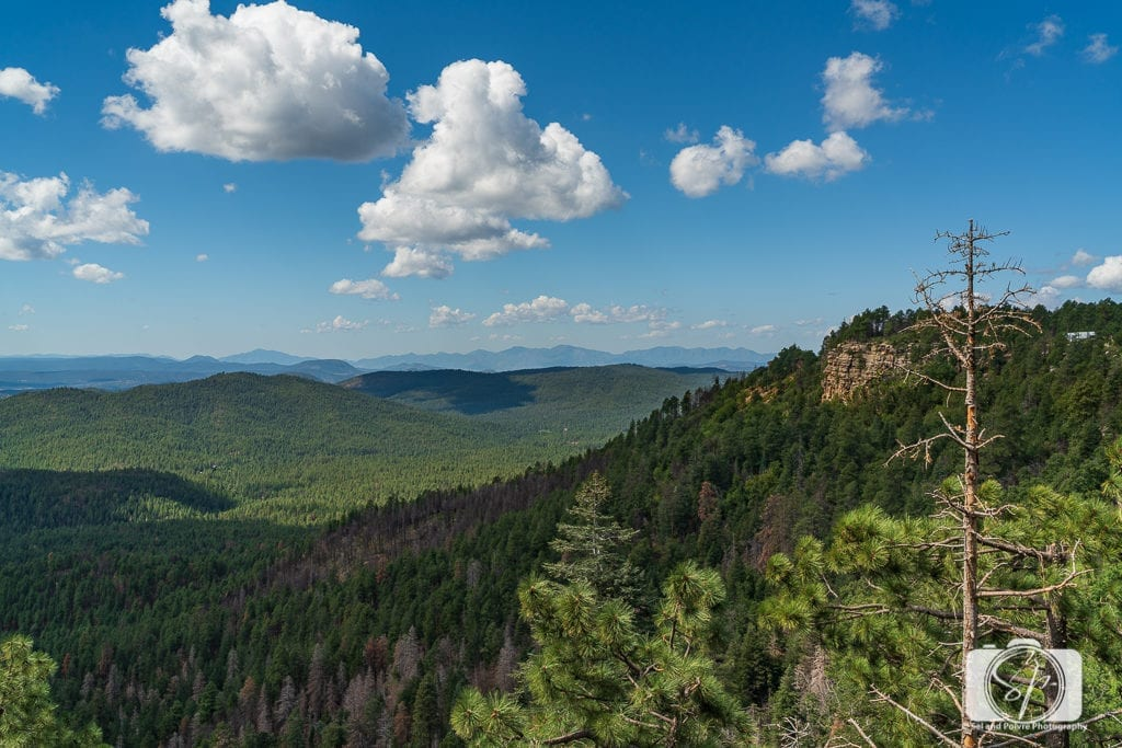 The 50 Best Day Trips from Phoenix - Mogollon Rim Arizona