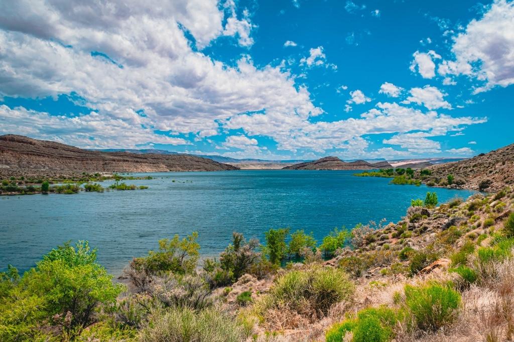alamo lake state park arizona