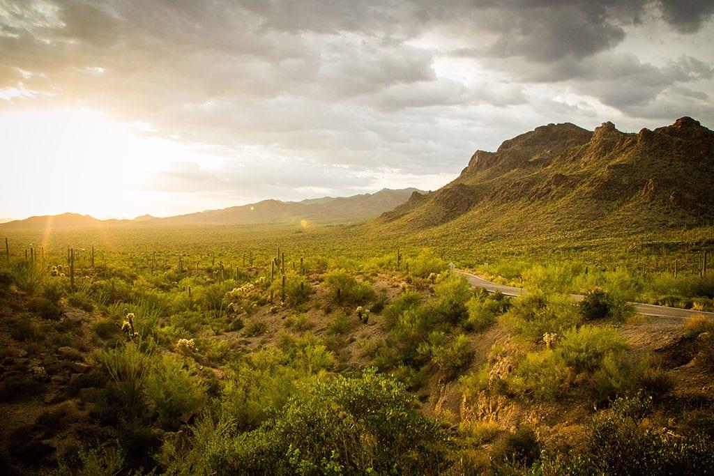 Visit Tucson Arizona