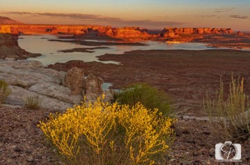 Alstrom Point Above Lake Powell Utah USA