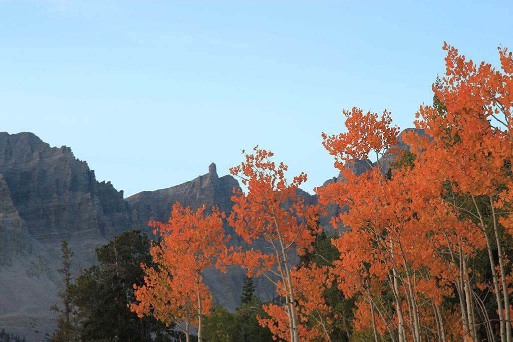 Great Basin National Park Nevada USA