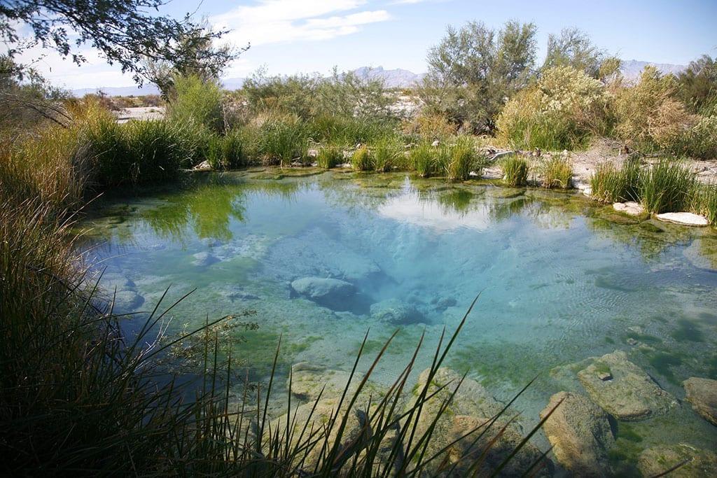 Longstreet Spring in Ash Meadows National Wildlife Refuge Nevada USA
