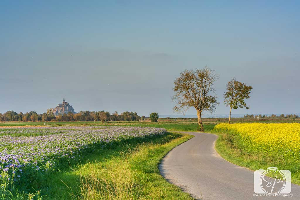 Mont St Michel from Beauvoir France