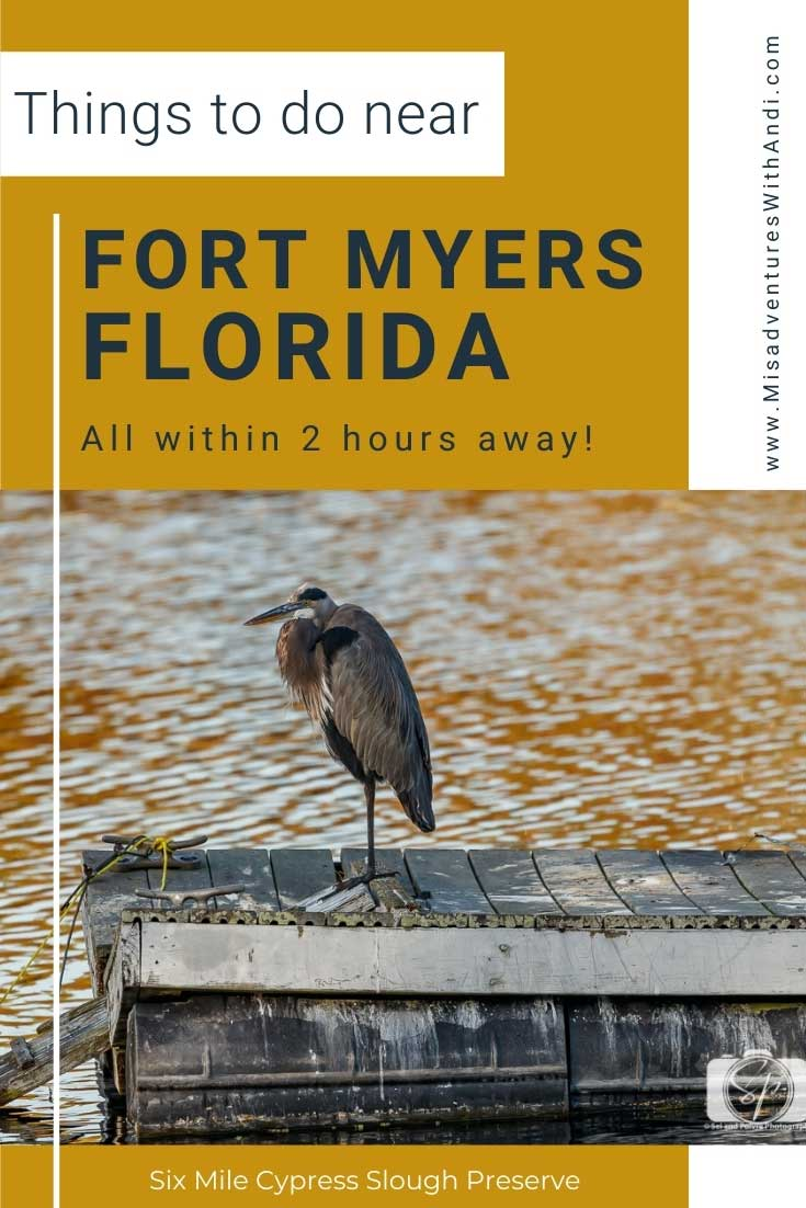 Fort Myers Florida Things to Do