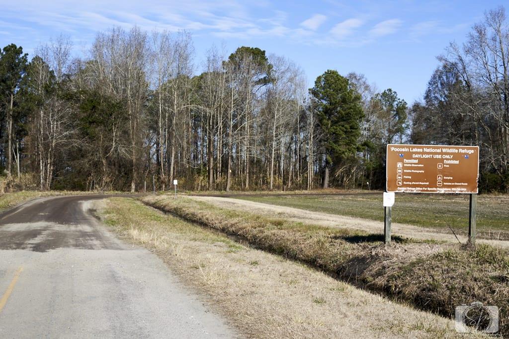 Entrance to the Pungo Unit of Pocosin Lakes National Wildlife Refuge