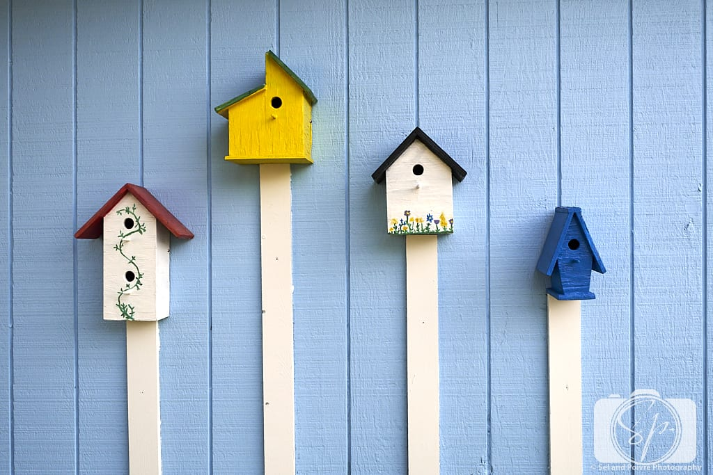 Birdhouses on a wall in Beaufort North Carolina
