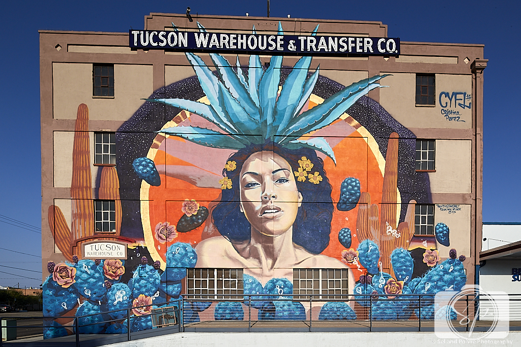 Tucson Goddess of Agave mural by artist Rock Martinez with assistance from artist Christina Perez