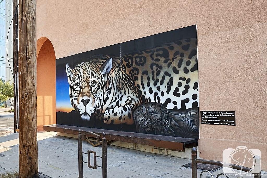 Tucson Jaguar Mural by Kati Astraeir