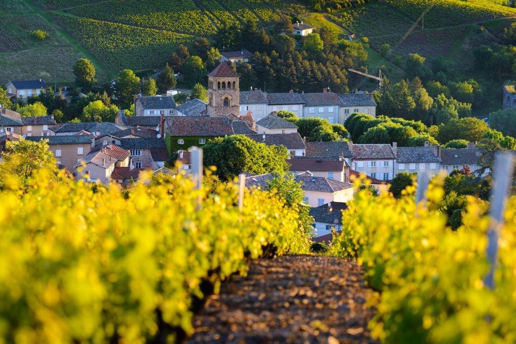 Beautiful Beaujolais France