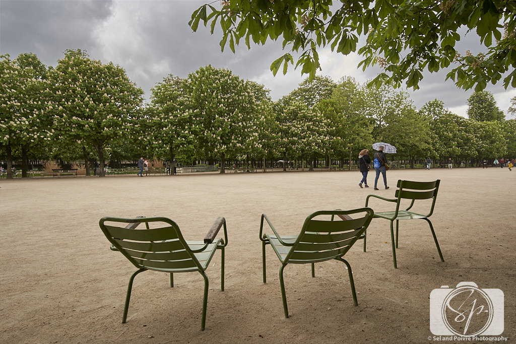 Paris Park Chairs in Tuileries Garden