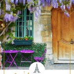 wisteria in front of a building in Paris