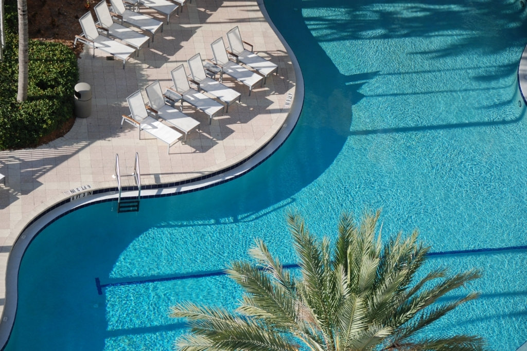 resort pool with chairs and a palm tree